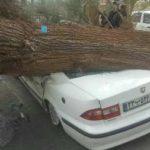 طوفان و اثرات مخرب آن در سیستان و بلوچستان؛