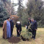 درختکاری مختص ۱۵ اسفند نیست/ باید نسبت به حراست از محیط زیست بازنگری کنیم؛