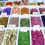 شروع برداشت گیاهان دارویی در شهرستان زیرکوه