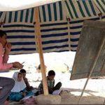 معلمان عشایری خراسان جنوبی در الگوهای برتر تدریس خوش درخشیدند