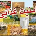 پروژه کشوری پایش امنیت غذایی در شهرستان درمیان اجرا میشود