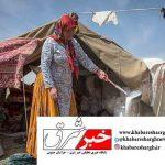 ۷۰ درصد فرآوردههای دامی خراسان جنوبی توسط عشایر تولید میشود