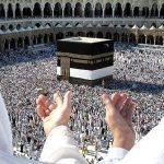 مقدمات برقراری «حج عمره» فراهم شده است؛