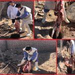حذف و معدوم سازی بیش از ۱۵۰کیلوگرم گوشت قرمز غیر قابل مصرف در کشتارگاه دام قاینات