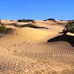 ۶۰ درصد کل مساحت کشور در معرض تخریب و تبدیل شدن به بیابان است