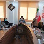 گزارش تصویری /اولین کارگروه تخصصی اشتغال استان با موضوع بررسی و تبادل نظر درخصوص عملکرد شهرستانها